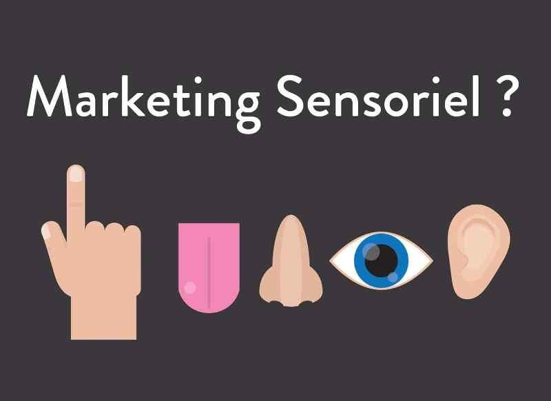 Découvrez l'essentiel concernant le marketing sensoriel !